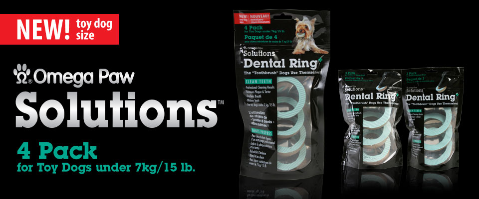 Dental Ring for toy size dogs