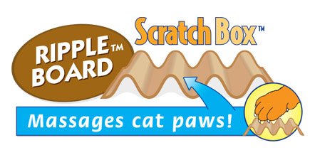 cat scratch box